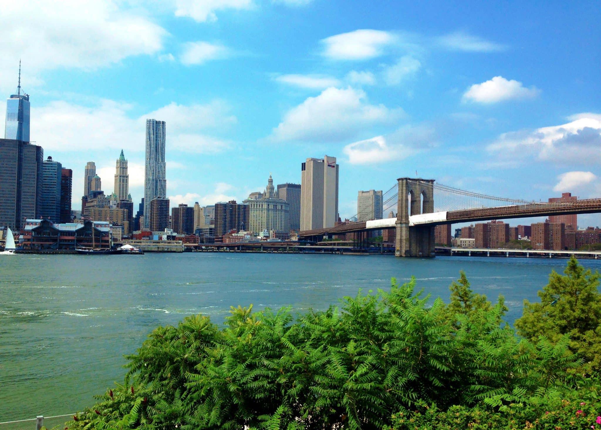 summer in new york brooklyn bridge park