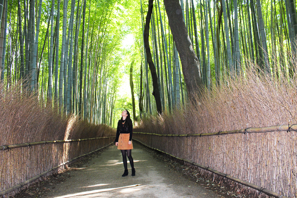 ARASHIYAMA-SAGANO: A WALK THROUGH WESTERN KYOTO