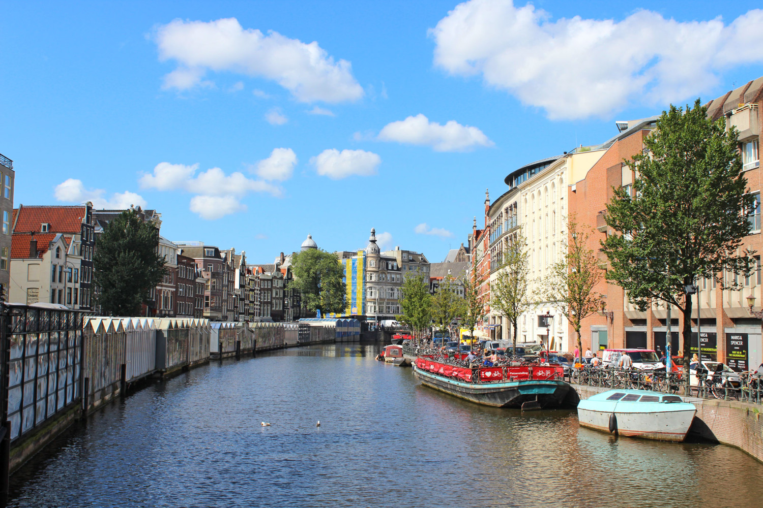 Amsterdam in 5 days itinerary flower market
