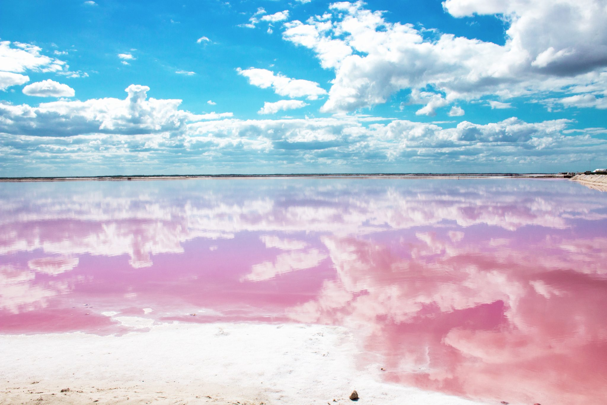 Las Coloradas Pink Lake Lagoon Mexico